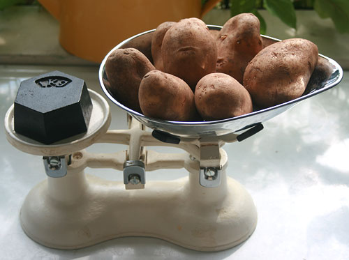 Weighing the potatoes